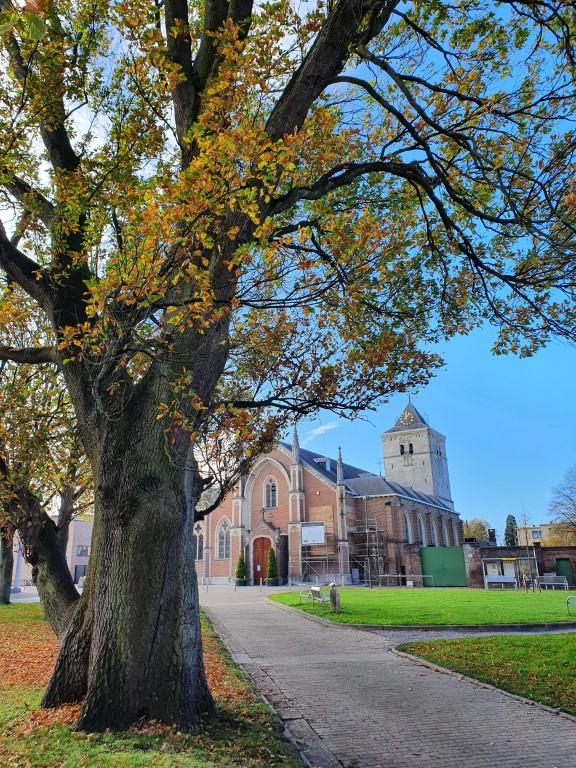 Munsterbilzen: kerk