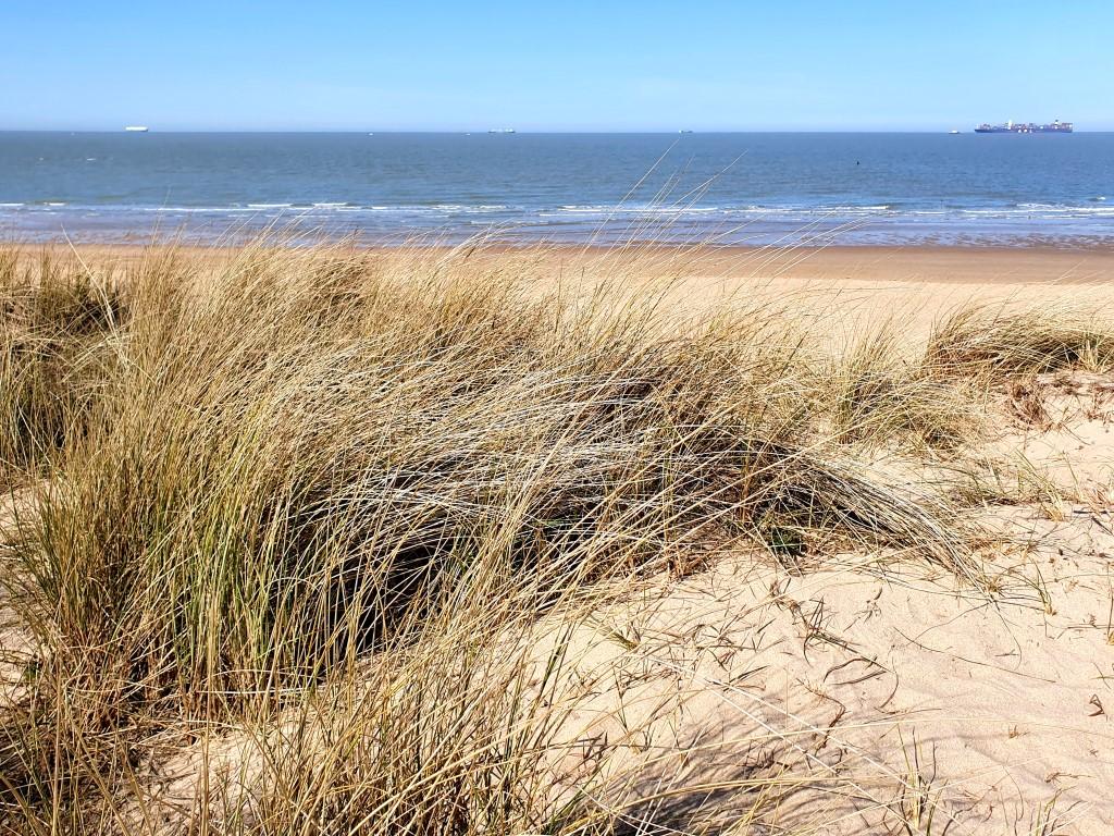 Een stukje kust mag niet ontbreken bij deze wandeling in Het Zwin.