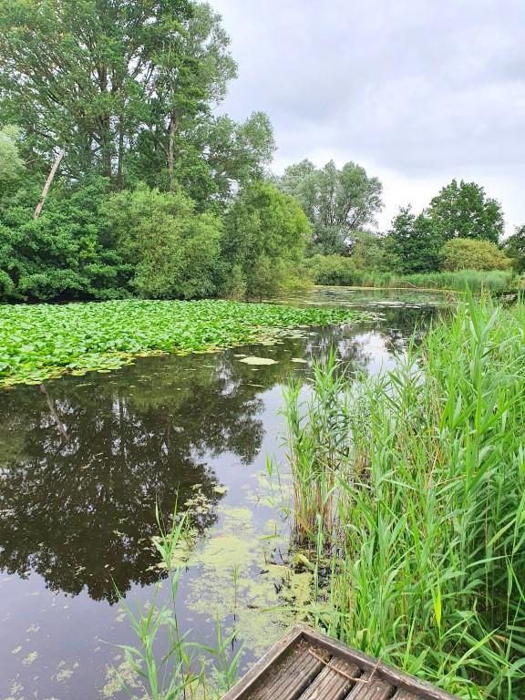 Het Blankaart wandelpad loopt door drassig en mogelijks overstromingsgebied van de IJzer. Veel water en vlonderpaden!