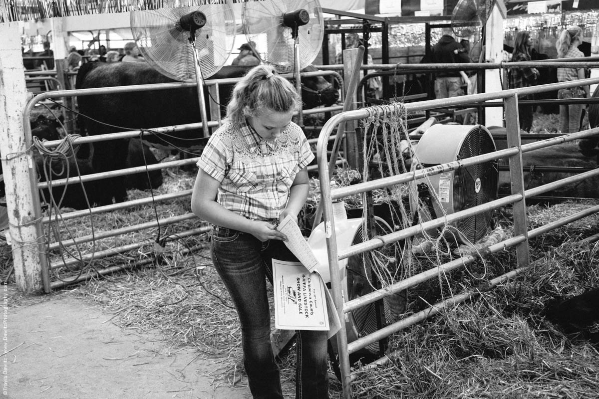 Northern Wisconsin State Fair Reading Chippewa 4h Ffa Livestock Show And Sale