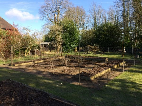 View of the site where the new fruit cage will be, Mark Cross, East Sussex