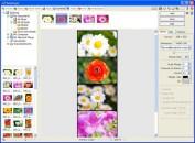photoscape - program de fotografii si imagini 6