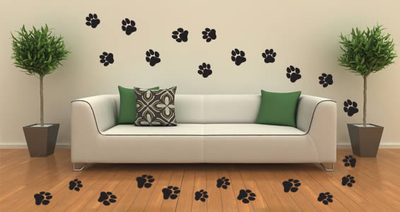 cats dogs prints wall