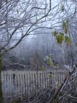 De ZintuigenTuin - Seizoen -Winter - (27)