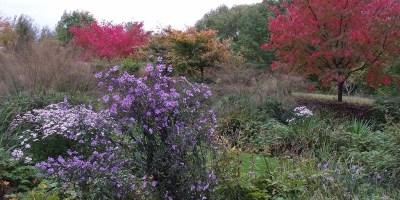 Herfst - Zintuigen Heerhugowaard