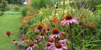 Tuin - zintuigen - heerhugowaard