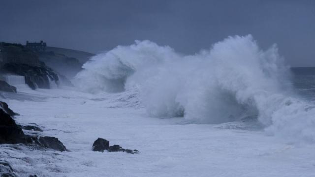 'From the Wild Sea' selected for Berlin | Danish Film Institute