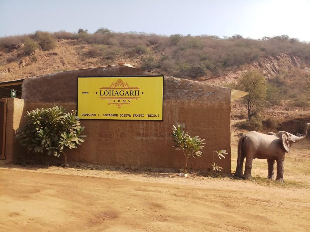 Lohagarh Farms DforDelhi