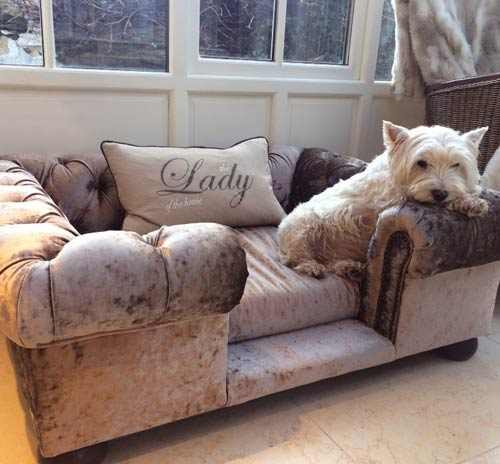 pink throw pillows for sofa 5 in 1 bed balmoral truffle crushed velvet luxury dog