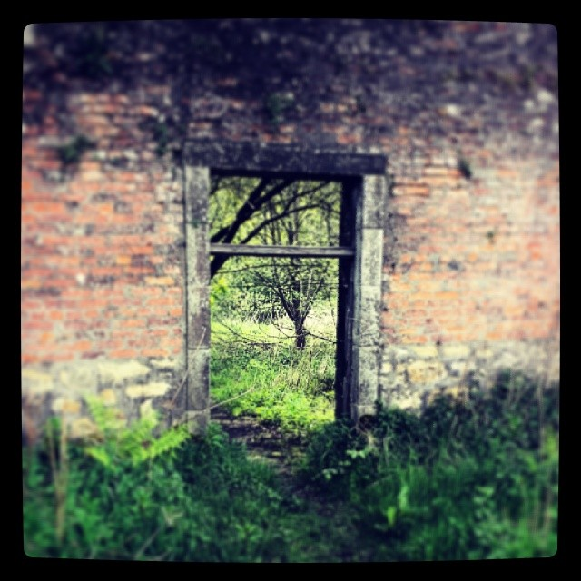Doorway in Larbert Woods, Scotland