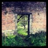 Doorway in Larbert Woods, Scotland