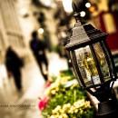 DanCL » Photoblog | Promenade