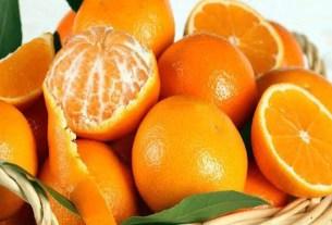 https://www.dhakaprotidin.com/wp-content/uploads/2021/01/Orange-Dhaka-Protidin-ঢাকা-প্রতিদিন.jpg
