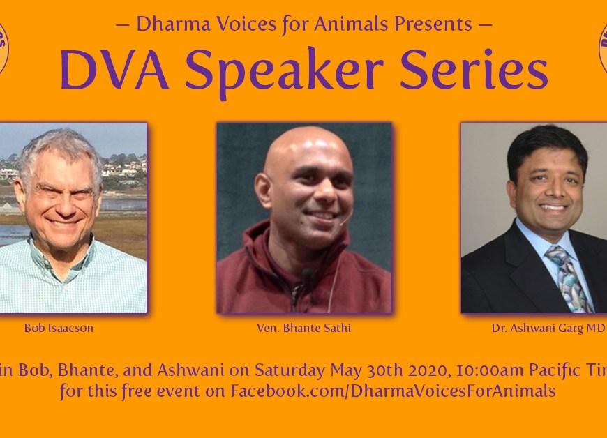 Inaugural DVA Speaker Series