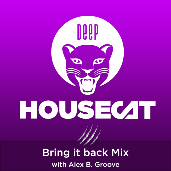 Deep House Cat Show - Bring it back Mix - with Alex B. Groove