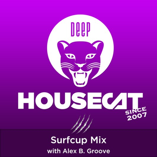 Surfcup Mix - with Alex B. Groove