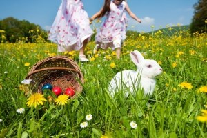 holiday cottages in dorset and weymouth for easter
