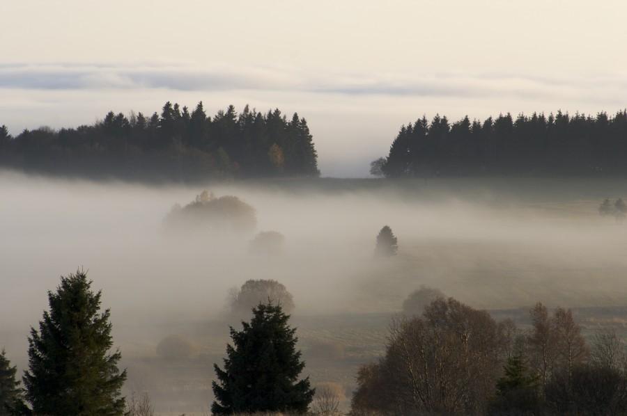 Abendstimmung mit Nebel in der Rhön