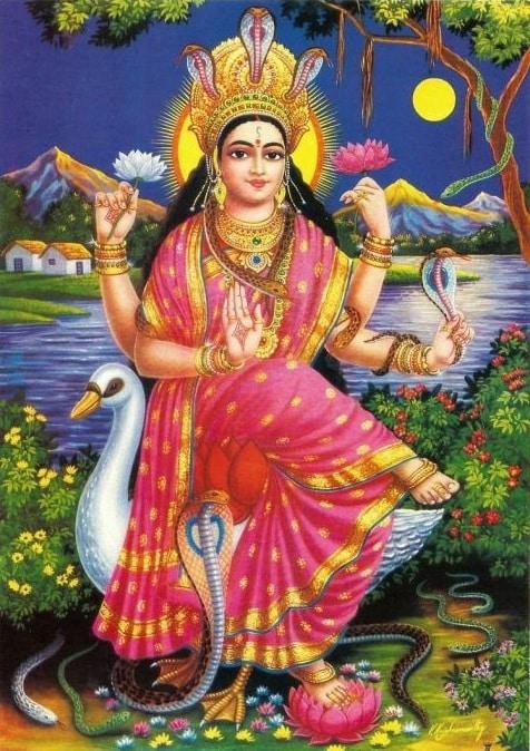 Shirdi Sai Baba Astrology ||