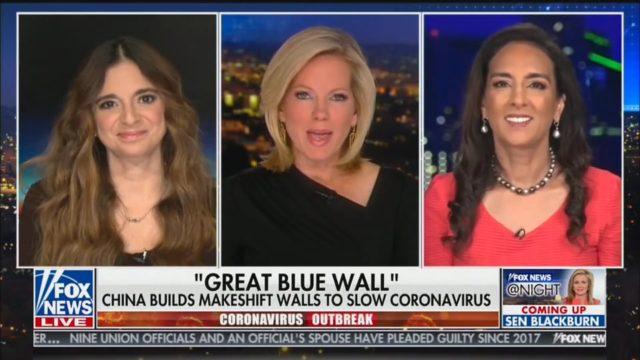 Dhillon on Coronavirus Outbreak in America