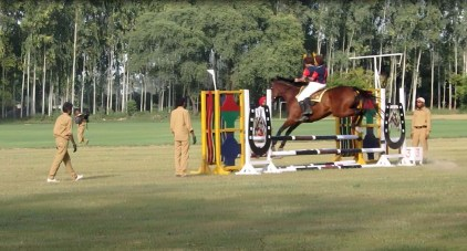Horse riding demonstration 8