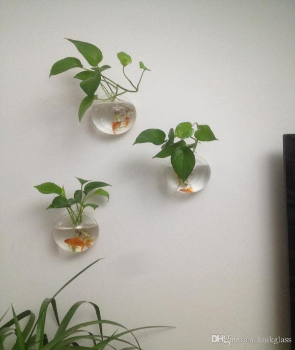 20 Glass Wall Plant Hangers Pictures And Ideas On Meta Networks