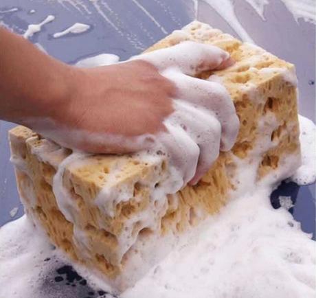 Car Wash Car Wash Supplies Large Dense Foamy Sea Sponge