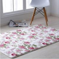 1.0*1.5m Printing Mat Area Rug For Living Room Durable