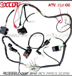 complete electrics atv quad four wheeler 200cc 250cc ignition coil cdi switch key rectifier harness [ 1000 x 1000 Pixel ]