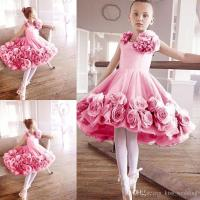 Sweety Little Girls' Ballet Dress With 3d Floral Appliques ...