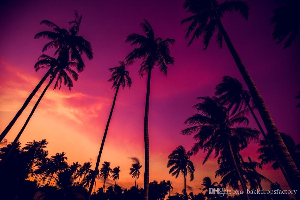 California Palm Trees Tumblr Wallpaper