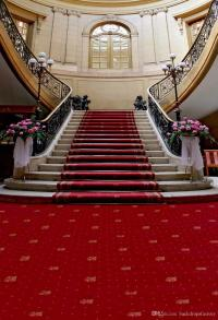 2018 Red Carpet Staircase Wedding Photography Backdrop ...
