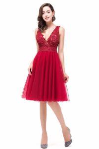 2017 Knee Length Prom Dresses Cheap Lace V Neck Backless ...