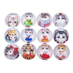 Kitchen Magnets Assembled Cabinets Fridge Funny Animal Cat Decor Sticker Creative Home Decoration For Advertising Business Cards