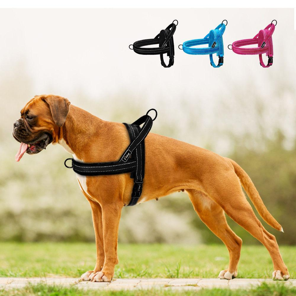 medium resolution of 2019 no pull nylon dog harness soft padded reflective pet harnesses vest for walking small medium large dogs adjustable xs s m l from nanfang2016