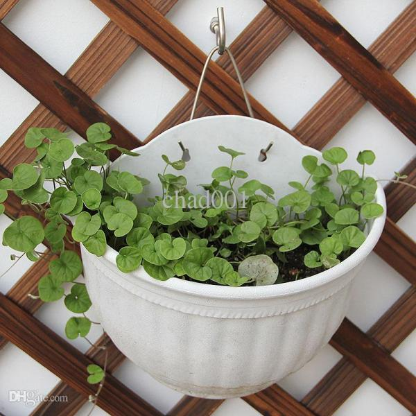 2019 Flower Pots Wall Hanging High Quality