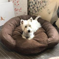 Soft Sofa Dog Bed Lazy Boy Recliner Repair 2019 Warm Mat Cat Pet Sleep Teddy Puppy House Fall Winter Nest Kennel Drop Shipping From Superzoo 45 22 Dhgate Com
