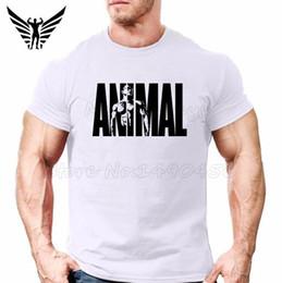 72bc62e832f19 ... Shirt Mens Workout Sportwear Powerhouse Golds Gyms Tops. Powerhouse Gym  Clothing Australia New Featured