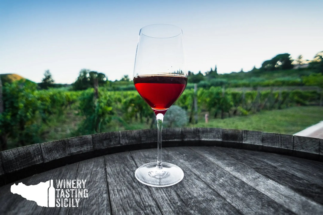 Degustazione vini. Enoturismo in Sicilia: territorio, vino e turismo esperienziale nelle cantine Siciliane.