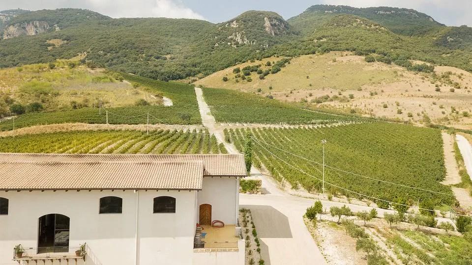 sicilian oil evo winery Di Giovanna sambuca di sicilia