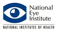 Eye Health Program Offers Free Online Training