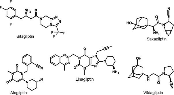 DPP-4 inhibitors: What may be the clinical differentiators