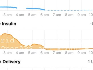 Hybrid Closed Looping with @OpenAPS and #Loop – a psychological perspective #wearenotwaiting
