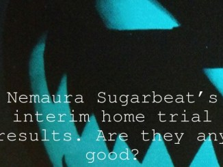 Nemaura Sugarbeat's interim home trial results. Are they any good?