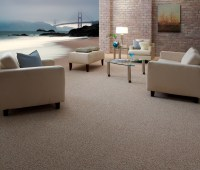 Shaw Flooring Brands At Carpet Retailers Nationwide 2015 ...