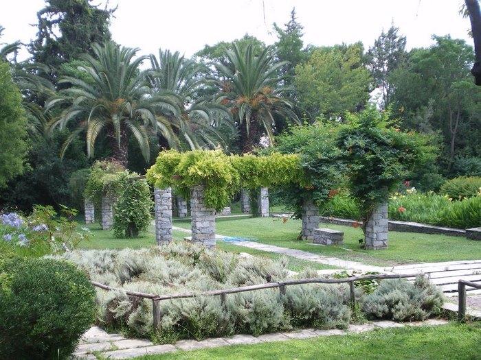 Ο μεγαλύτερος βοτανικός κήπος της ανατολικής Μεσογείου βρίσκεται στην Αθήνα. Και οι περισσότεροι δεν τον γνωρίζουν καν! - Εικόνα 15