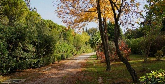 Ο μεγαλύτερος βοτανικός κήπος της ανατολικής Μεσογείου βρίσκεται στην Αθήνα. Και οι περισσότεροι δεν τον γνωρίζουν καν! - Εικόνα 3