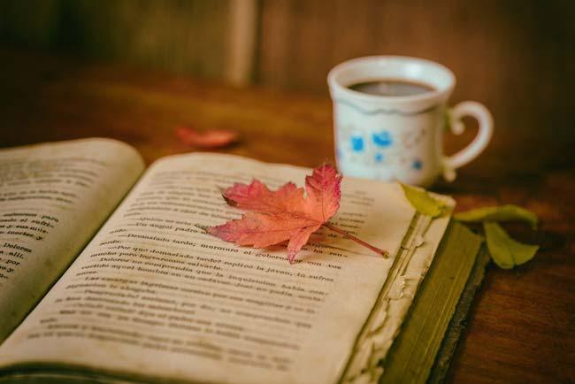 Un libro puede suponer una buena terapia para una persona