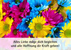 Blumen Senden Stuttgart