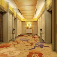 ZS17519, nylon printed carpet, elevator hall carpet